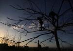 """عن """"الخوف"""" الذي استوطن غزة"""