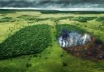 لماذا يجب أن نقلق جميعًا من حرائق الأمازون ؟
