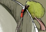 المزارعات الفلسطينيات..صمود في وجه الجدار الفاصل