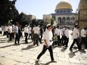 575 مستوطنًا اقتحموا المسجد الأقصى بأسبوع