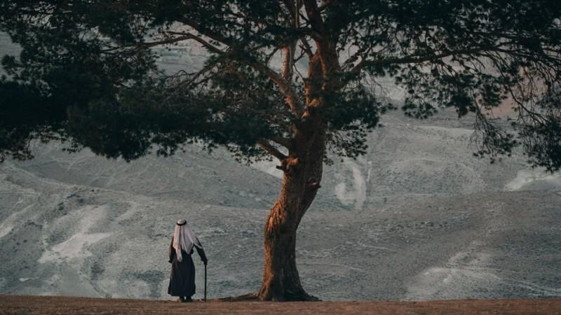 واحدة من الصور المشاركة في مسابقة كريمة عبود
