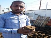 """بلوكات من """"جفت الزيتون"""" بديل طبيعي للطاقة في غزة"""