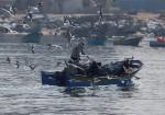 بحر غزة يغيبُ عن قصص أبنائه