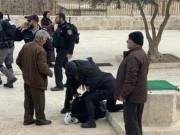 """""""الخارجية"""": إعادة احتلال القدس والتنكيل بالمصلين سقوط للرواية الإسرائيلية"""