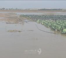 الاحتلال يغرق ألف دونم من أراضي المواطنين الزراعية شرق غزة