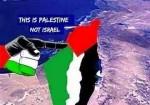 """صراع الوجود.. """"جوجل"""" و""""أبل"""" في صف """"إسرائيل"""""""