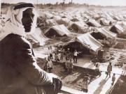 """""""فائقة"""" ترصد بدايات المخيّم في """"حكاية لاجئ"""""""