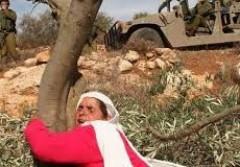 المرأة الفلسطينية..كفاح عريق يتعثّر بالانقسام