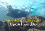 هل فكرتم في الغوص في اعماق البحر ؟ (فيديو)