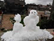هل صحيح أن الثلج تساقط في غزّة؟