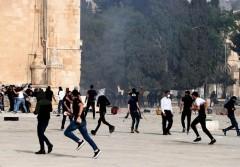 قوات الاحتلال تقتحم باحات الأقصى وإصابة أكثر من 305 مواطنين
